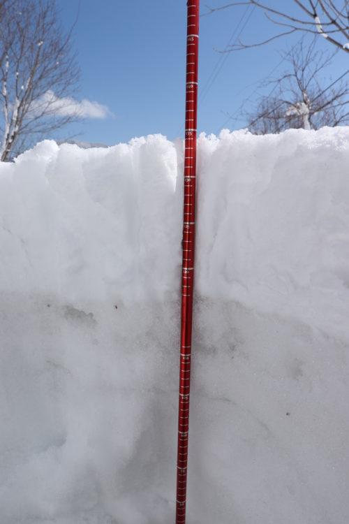 積雪深をプローブで測る