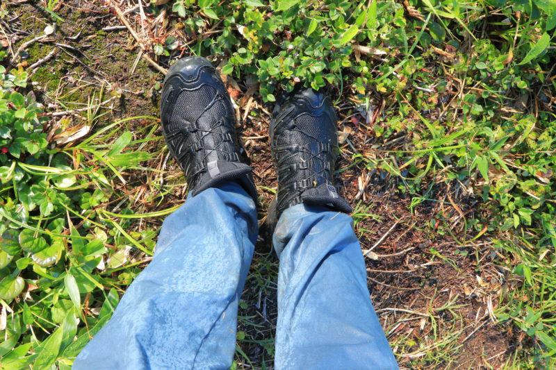 朝露で濡れた靴