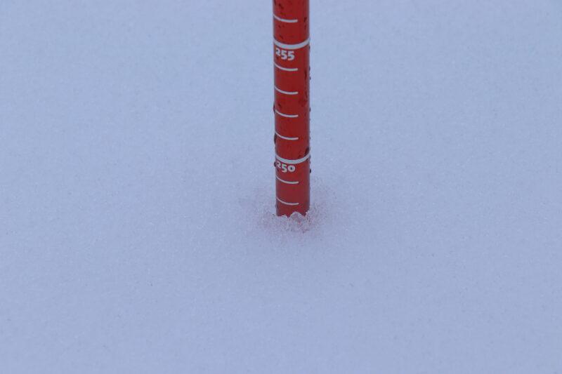 プローブで積雪深を確認